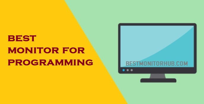 best monitor for programming
