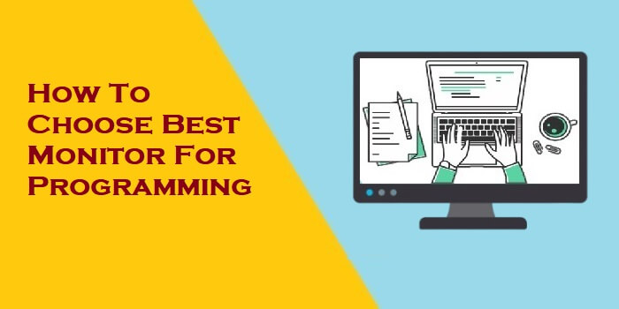 How To Choose Best Monitor For Programming