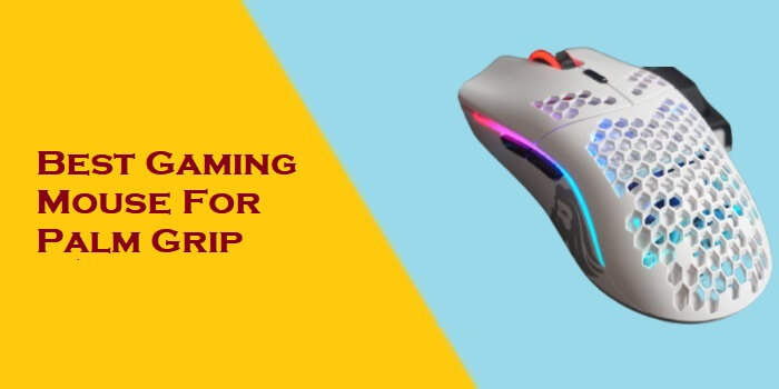 Best Gaming Mouse For Palm Grip