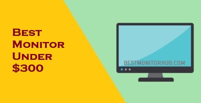 Best Monitor Under $300